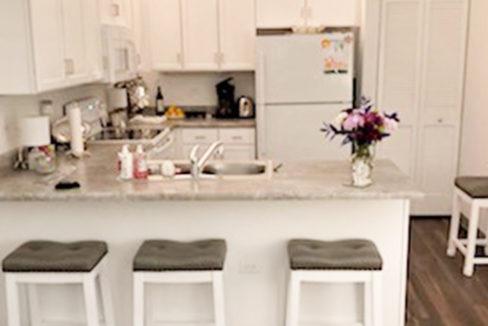 Forest Oak Apartment Kitchen