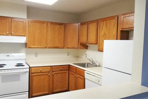Hunt Club Village Apartment Kitchen
