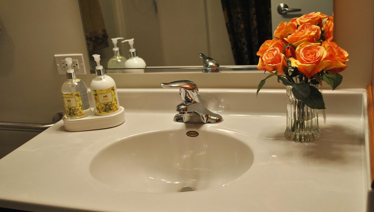 Zurich Meadows Apartment Sink