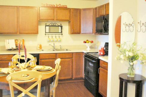 Zurich Meadows Apartment Kitchen